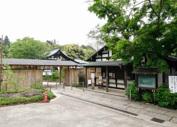 Entering Hondoji, Chiba's Hydrangea Temple