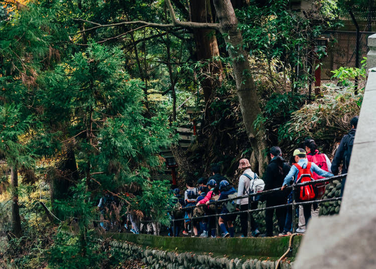 Guide to climbing Mount Takao: No problems for first-timers!