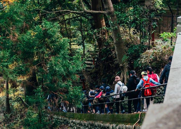 初体验者也不怕!高尾山登山导览