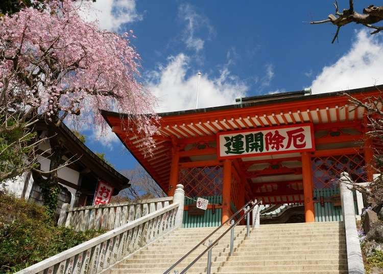 Not Just For Hikers! Incredible Seasonal Sights All Year Round at Mount Takao for Everyone's Viewing Pleasure