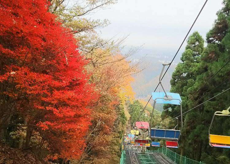 Getting to Mt. Takao! Best Train & Ticket Information (Plus Handy Discount Info)