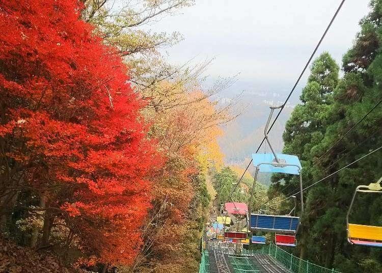 도쿄 다카오산 여행을 위해 저렴하게 가기 위한 방법과 전철편, 티켓정보
