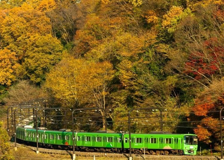 去高尾山的交通方式,還是搭電車最方便!