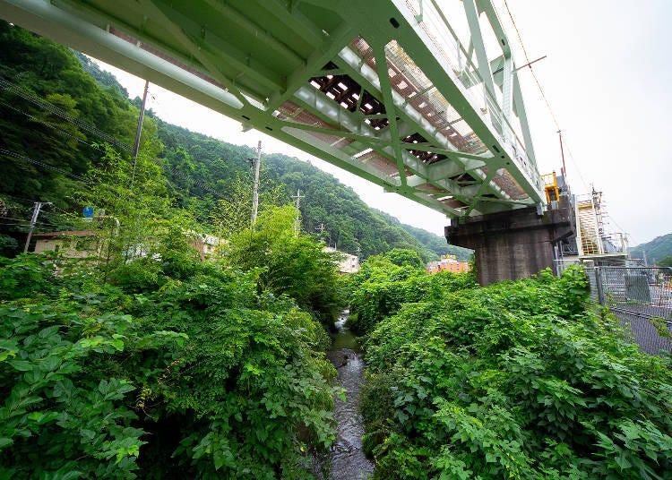 大自然あふれる「高尾山」の楽しみ方