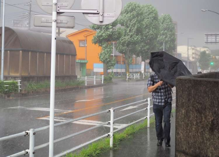 More that 26 typhoons every year! Basic knowledge of Japanese typhoons before traveling