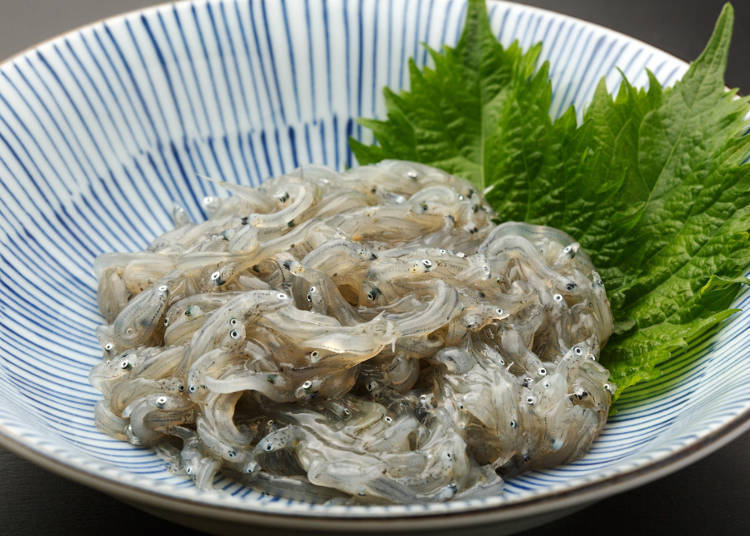 Shirasu: Live Whitebait is too scary to eat...
