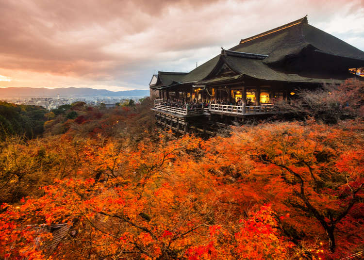 Fall Colors 2019: Top 25 Breathtaking Places For Autumn Leaves In Japan