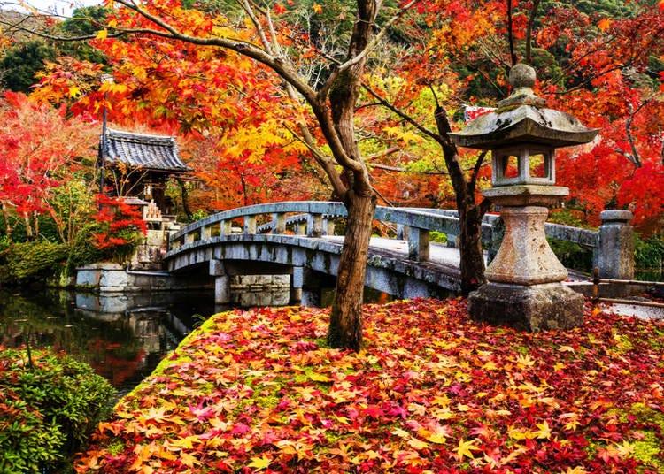 1. Eikando Temple/Zenrinji Temple (Kyoto)