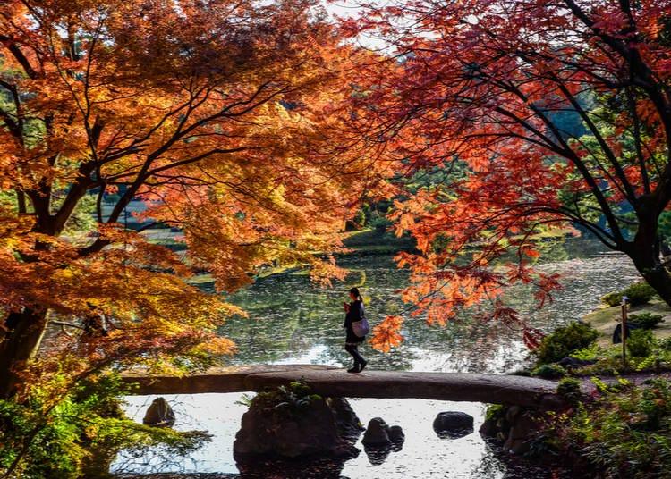 8. Rikugien Garden (Tokyo)