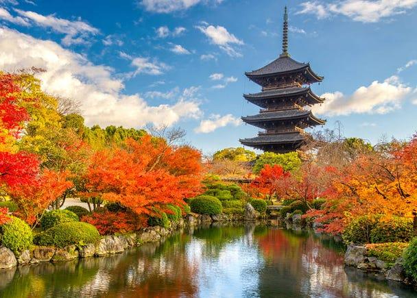 10. Toji Temple (Kyoto)