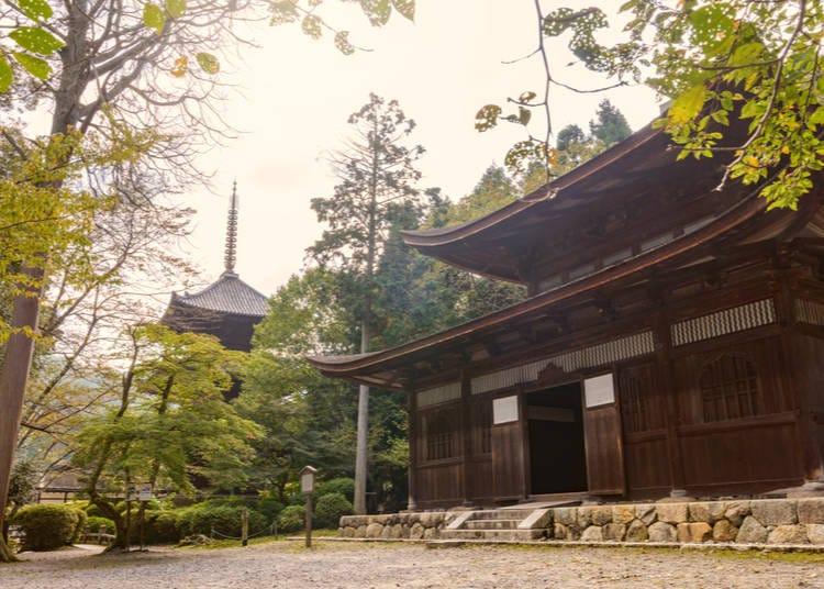 11. Mii-dera Temple/Onjoji Temple (Shiga)