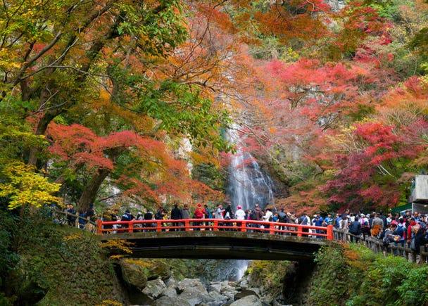 16. Mino Falls (Osaka)