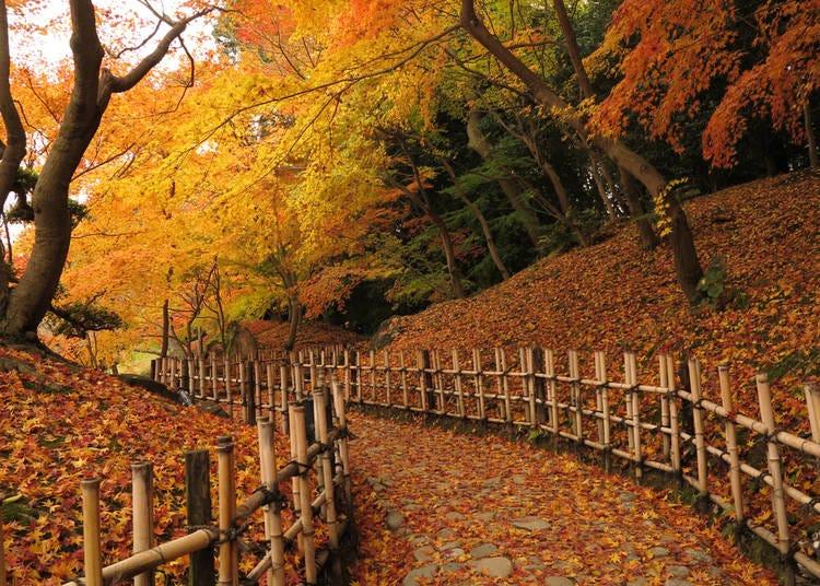 20. Ritsurin Garden (Kagawa)