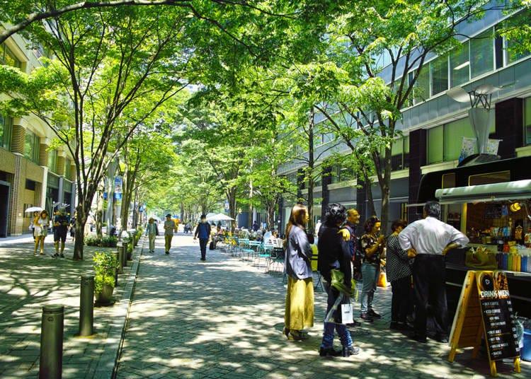도쿄역 주변 고급 상점이 모여 있는 어른들을 위한 거리 '마루노우치'