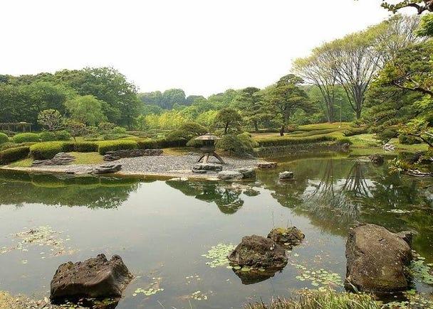 自然を満喫するなら「二の丸庭園」