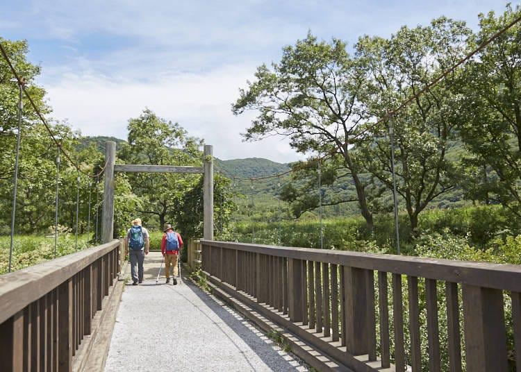 ■湿原、温泉、森林、石の山、多彩な山の魅力を堪能できるトレッキングコース