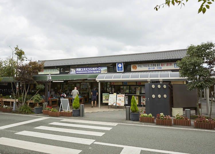 ■在日フランス人が日本の文化や阿蘇の魅力を紹介してくれる「道の駅 阿蘇」