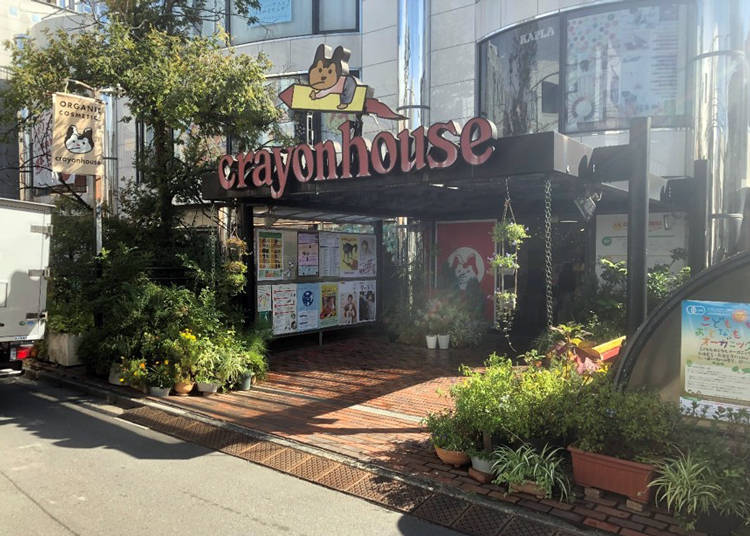 2. Crayon House Hiroba Healthy Organic Restaurant: All-you-can-eat Vegan and Vegetarian Food!