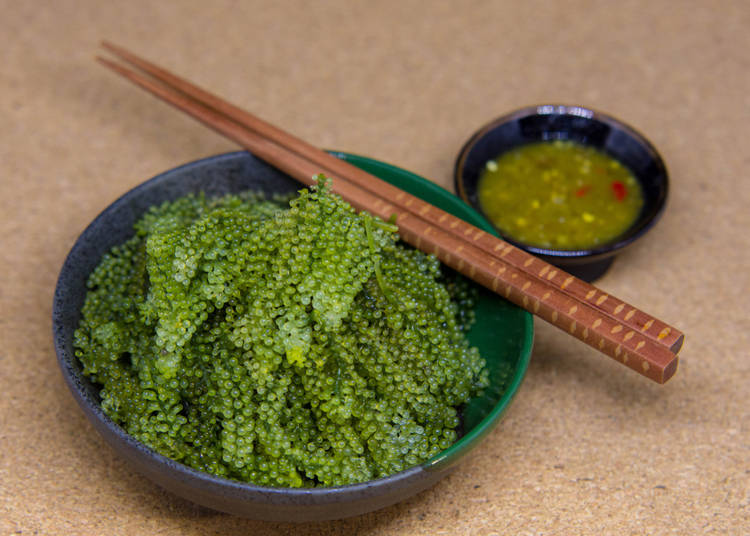 10. Sea Grapes - Umi Budo