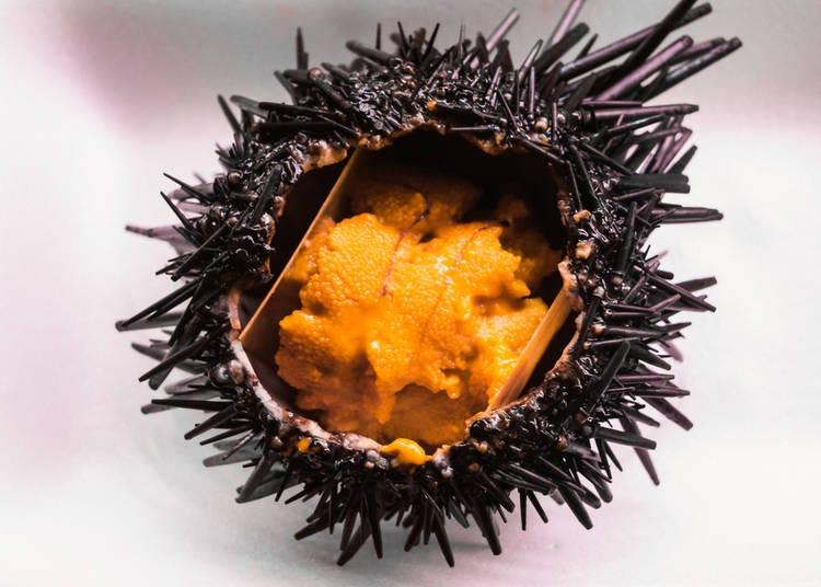 12. Sea Urchin - Uni