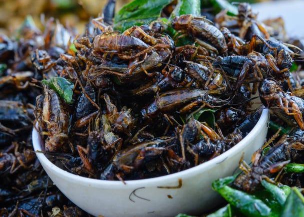 15. Locusts - Inago