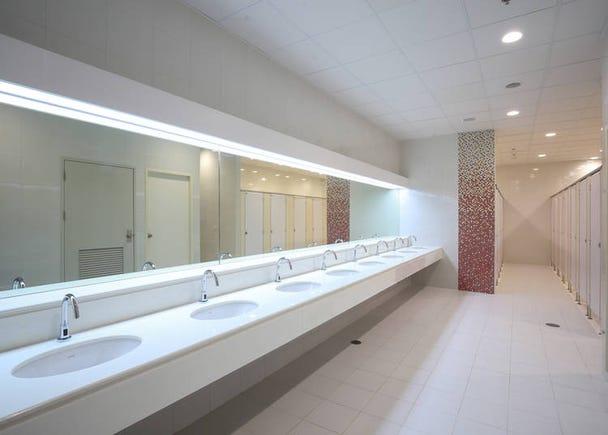 日本のトイレは自宅も公衆トイレもとにかくキレイ!