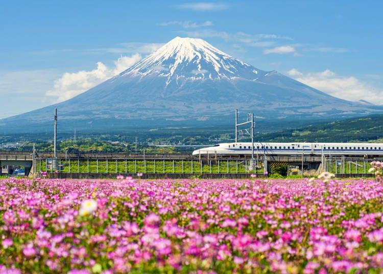 11. 日本といえばこの乗り物! 「新幹線」(イギリス/男性/30代)