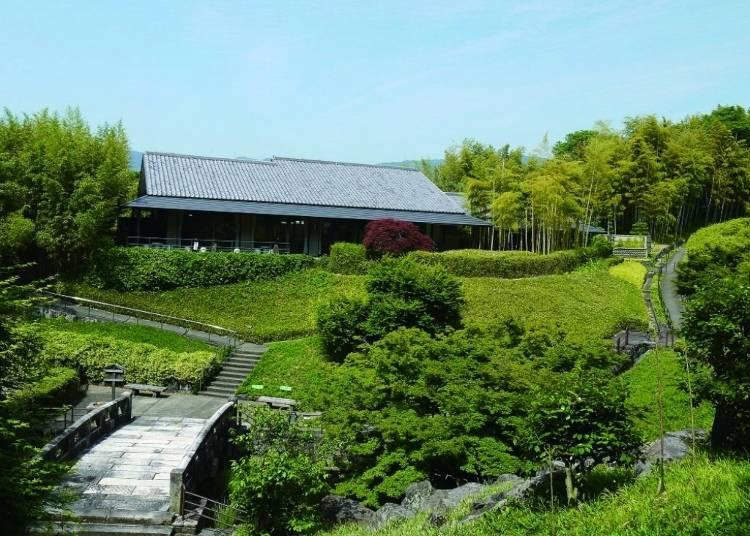 Kyoto City Rakusai Bamboo Park: A beautiful yet little-known hideaway
