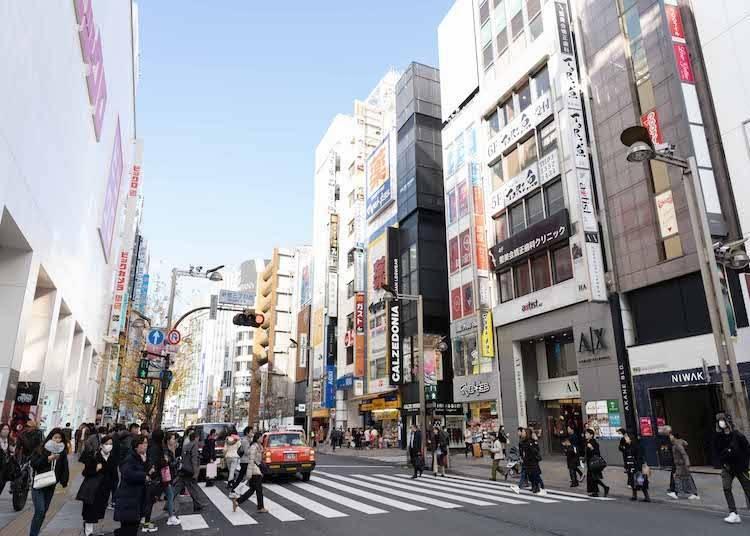 新的舊的都好有魅力!可以一次感受東京多種樣貌的新宿