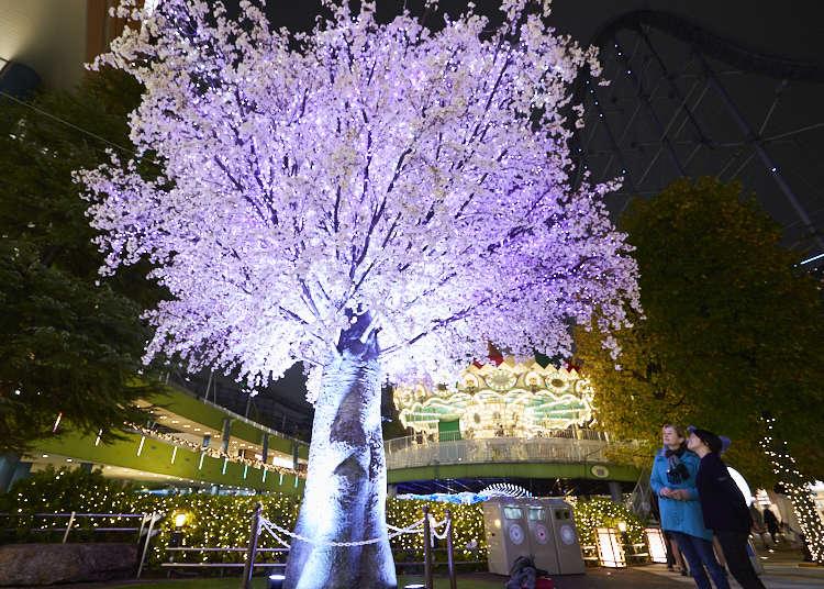 형형색색의 불빛이 반짝이는 도쿄의 겨울밤 TOKYO DOME CITY WINTER LIGHTS GARDEN