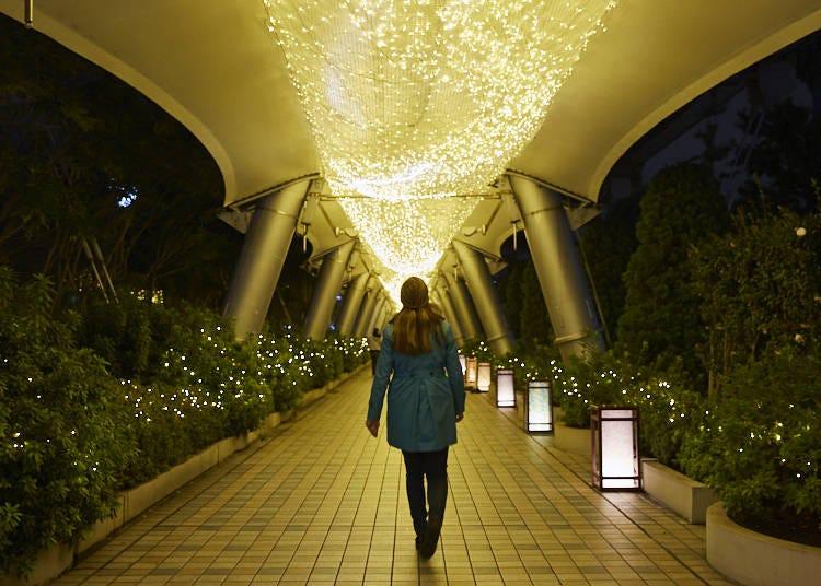 アトラクションやレストランも充実!誰もが楽しめる東京ドームシティ