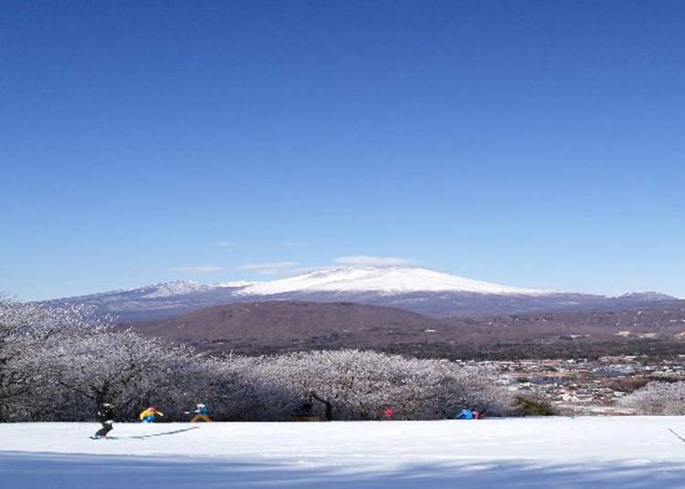到「轻井泽王子大饭店滑雪场」滑雪啰!