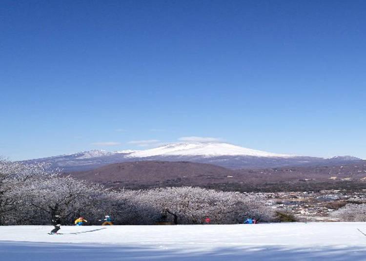 到「輕井澤王子大飯店滑雪場」滑雪囉!