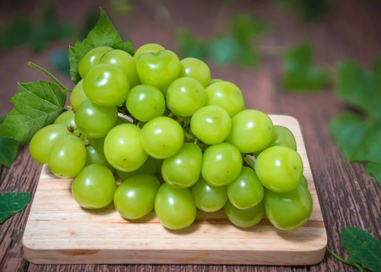 日本旅遊必吃水果②葡萄