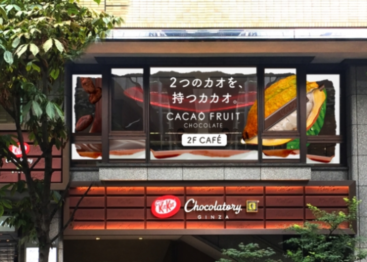 Kit Kat's crazy new cocoa pod dessert is only available at its Tokyo cafe【Photos】 - LIVE JAPAN
