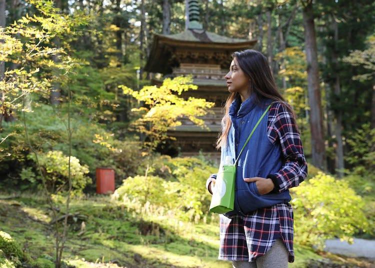 日本の田舎で自然体験