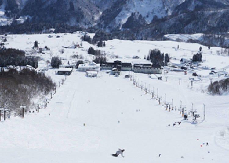 推荐给滑雪高手们的滑雪场②「白马乘鞍温泉滑雪场」