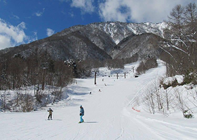 HAKUBA VALLEY滑雪場①爺岳滑雪場(適合新手)