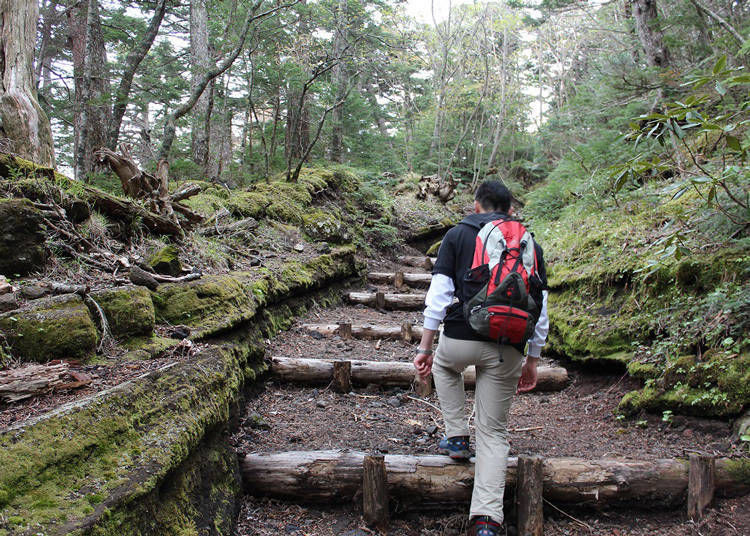 4 Mountain Climbing Trails to Remember