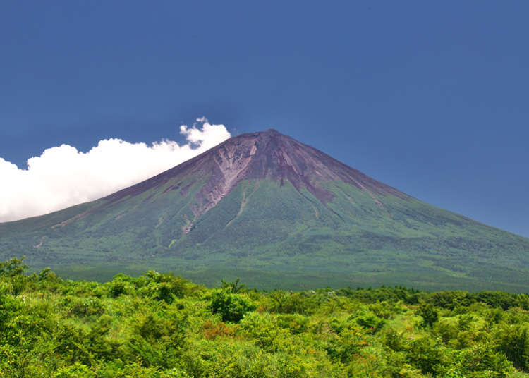 Shortest Route to the Top of Mt. Fuji: Fujinomiya Trail Ultimate Guide