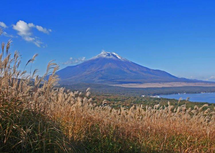 適合攀登富士山的季節&必須提出的資料有哪些?