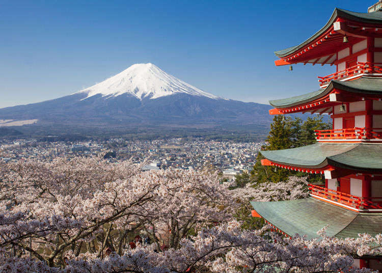 What Are The Best Things To Do Around Mt. Fuji? We Interviewed Tourists From All Over To Find Out!