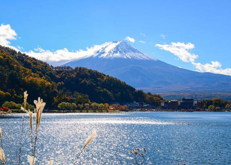 富士山周辺に行こうと思ったのはなぜ?