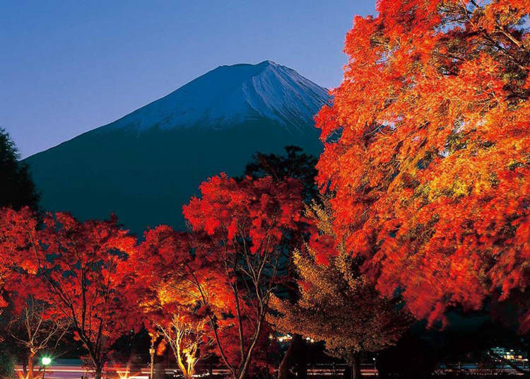 8. Nashigawa Maple Corridor: Mt. Fuji framed with autumn leaves