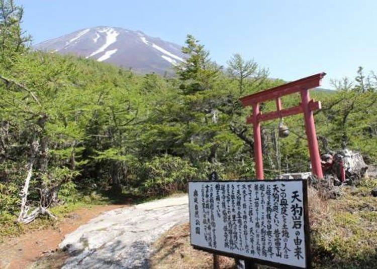 10. Mt. Fuji 5th Stage Okuniwa: A view so breathtaking, even a Tengu came for a visit!