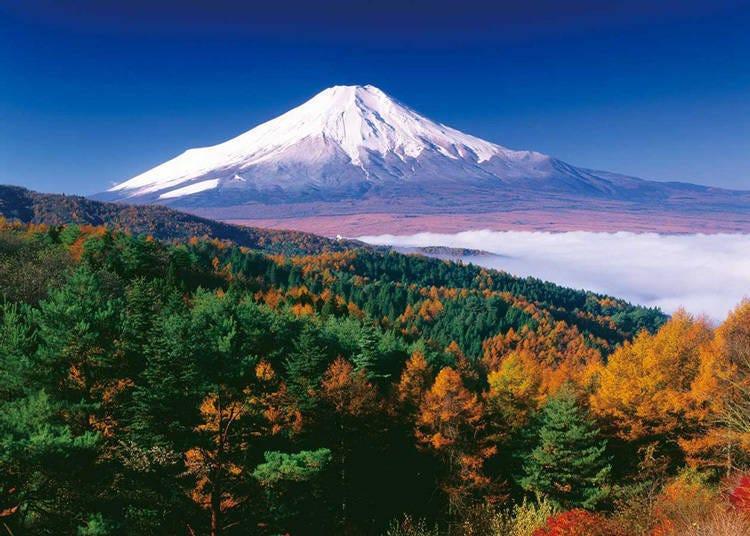 5.以日本第一漂亮富士山而闻名的「忍野村」