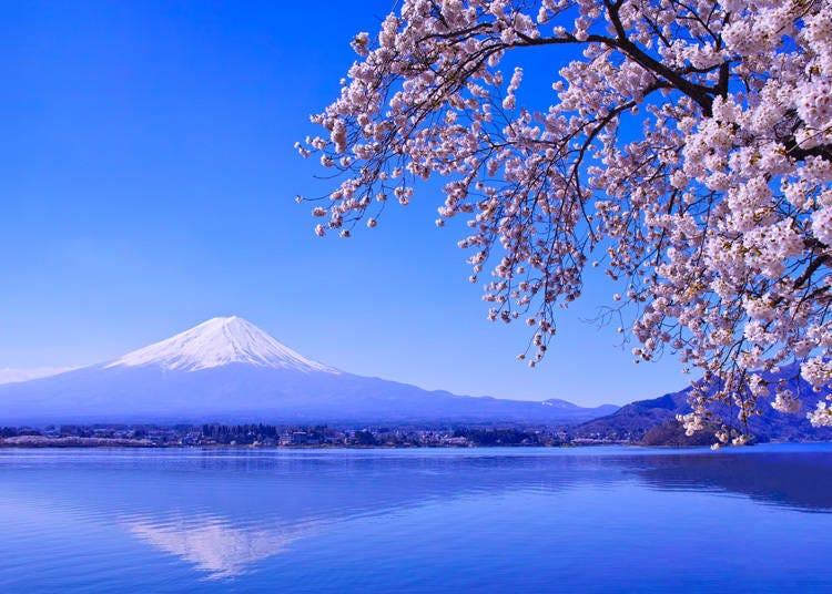 Highlights of Lake Kawaguchi