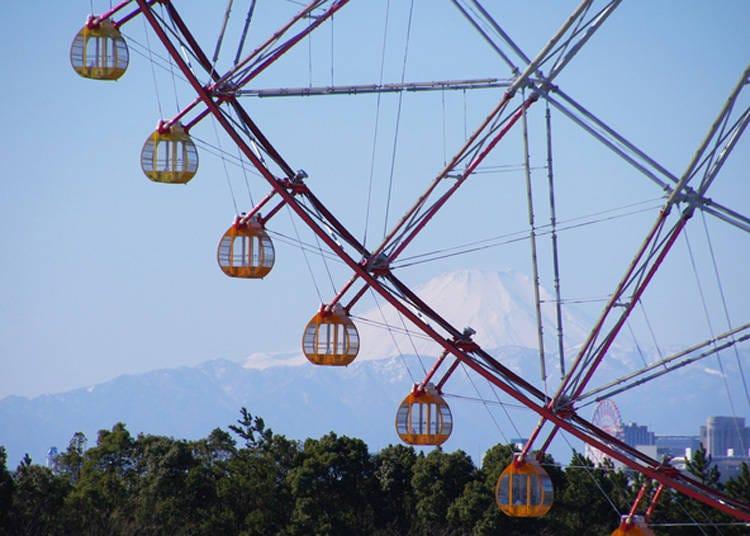 9. 日本最大級の観覧車越しに富士山を眺められる「葛西臨海公園」