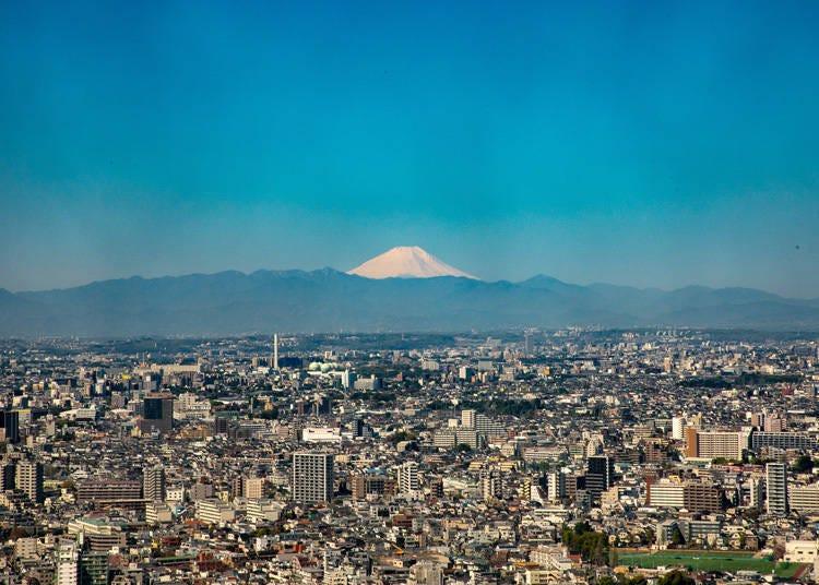 从东京也能看见富士山的景点2. 能够看见富士山的新宿象征地标「东京都厅展望室」