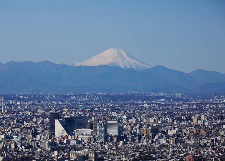 从东京也能看见富士山的景点3. 创新体感型展望台「SKY CIRCUS Sunshine 60展望台」